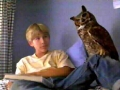 Marshall (Jonathan Taylor Thomas) with the owl Fiona in Wild America.